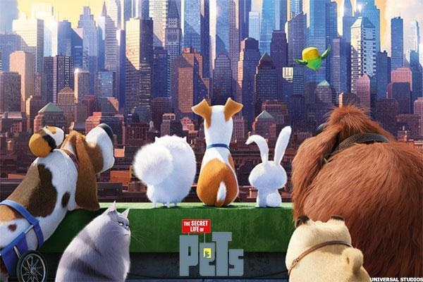 Image result for Secret Life of Pets Screening at Discovery Green